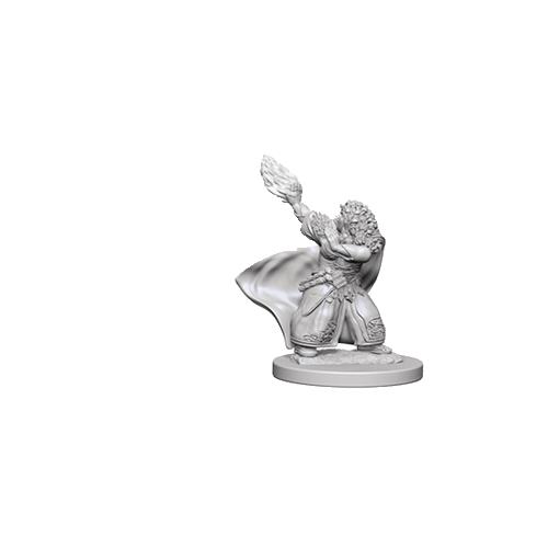 D&D Unpainted Miniatures: Dwarf Female Wizard
