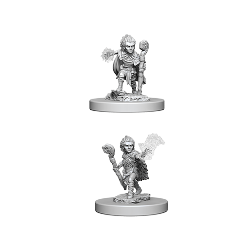 Pathfinder Unpainted Miniatures: Gnome Male Druid