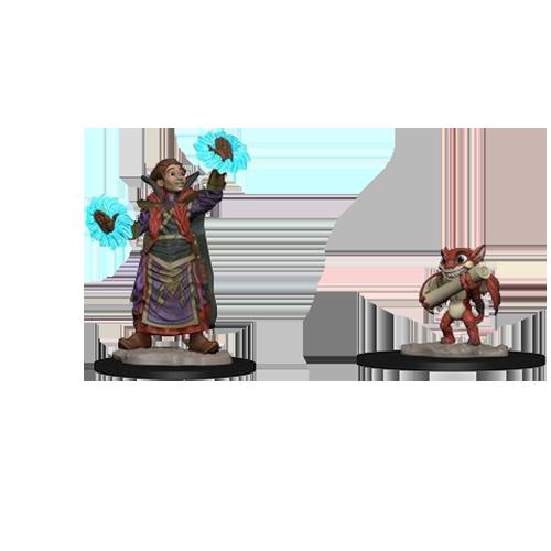 D&D Wardlings: Boy Wizard & Imp