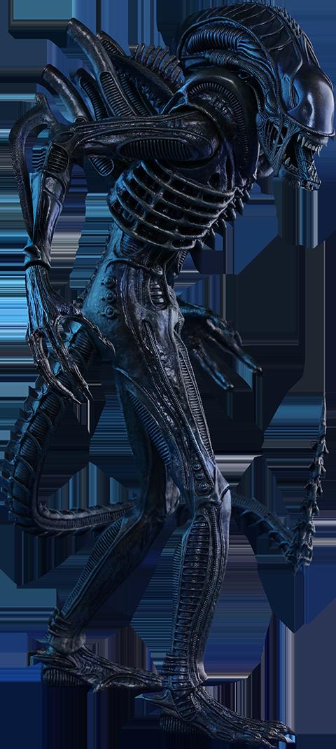 Aliens Movie Masterpiece Action Figure 1/6 Alien Warrior 35 cm imagine