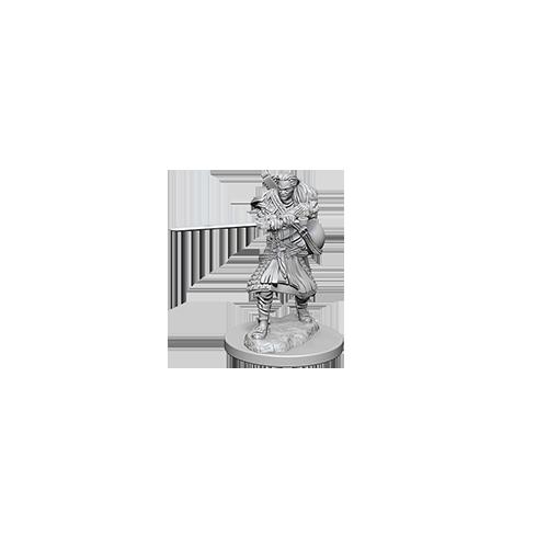 D&D Nolzur's Marvelous Unpainted Miniatures: Human Male Bard