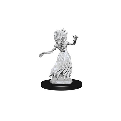 D&D Nolzur's Marvelous Unpainted Miniatures: Wraith & Specter