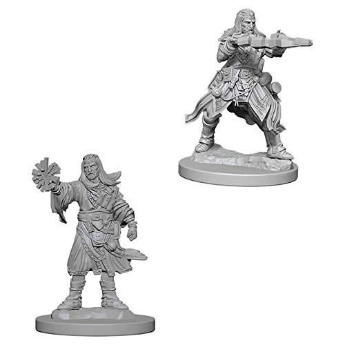 Pathfinder Unpainted Miniatures: Male Human Wizard