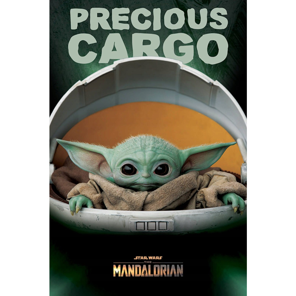 Poster Star Wars Mandalorian Precious Cargo
