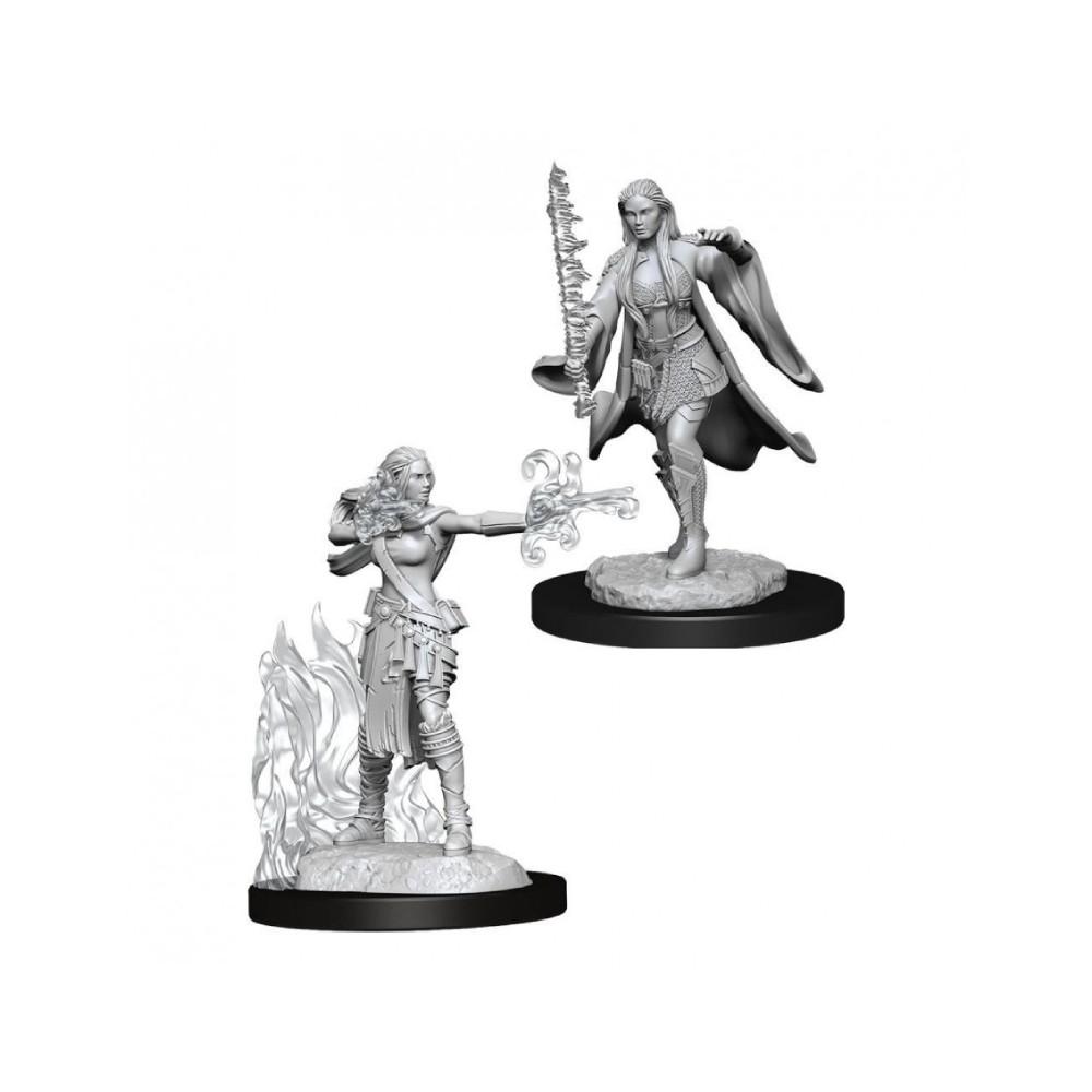 Miniaturi Nepictate D&D Nolzur's Marvelous Multiclass Warlock & Sorcerer (W13)