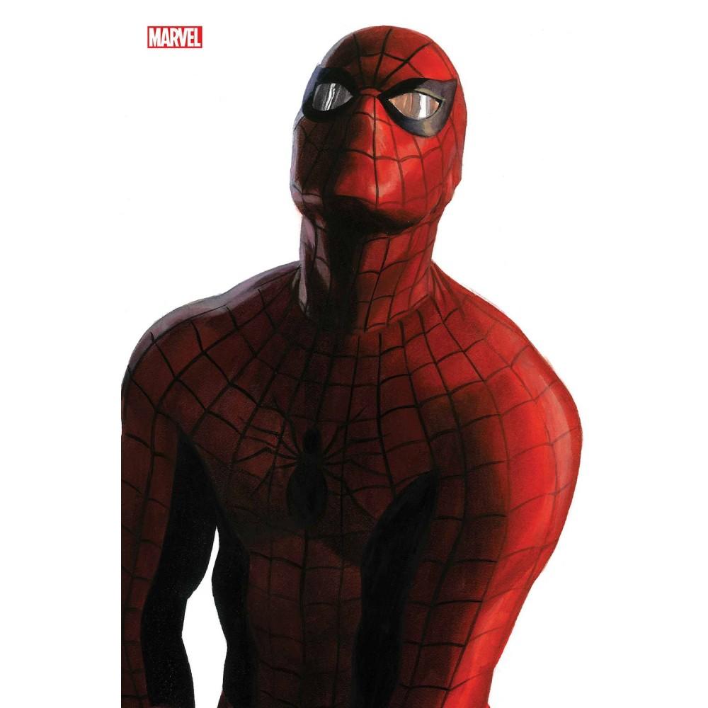 Amazing Spider-Man 50 Coperta C
