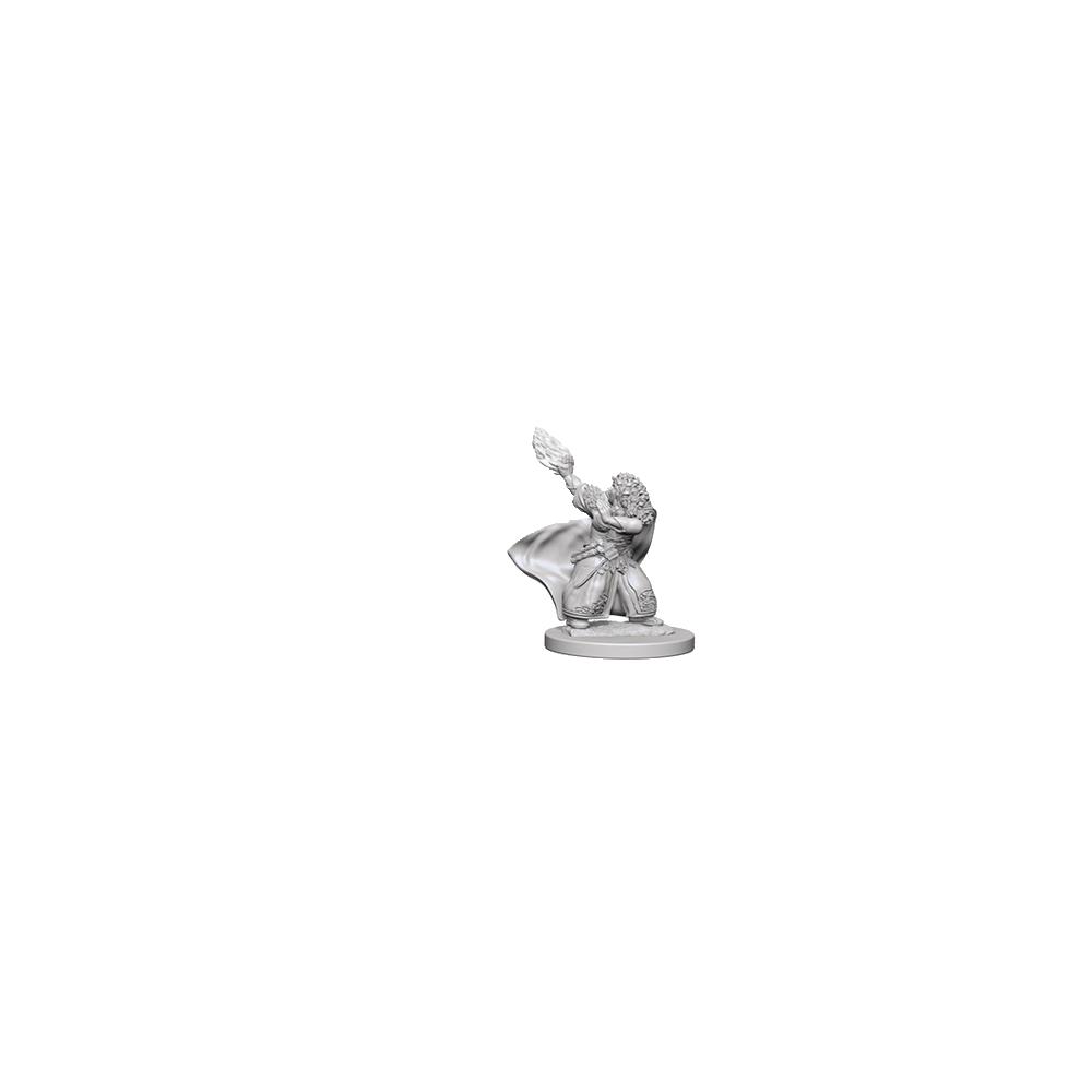 D&D Nolzur's Marvelous Unpainted Miniatures: Dwarf Female Wizard