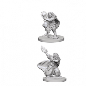 D&D Nolzur's Marvelous Unpainted Miniatures: Dwarf Female Wizard