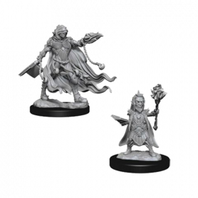 Pathfinder Unpainted Miniatures: Evil Wizards