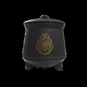 Harry Potter Storage Jar Cauldron