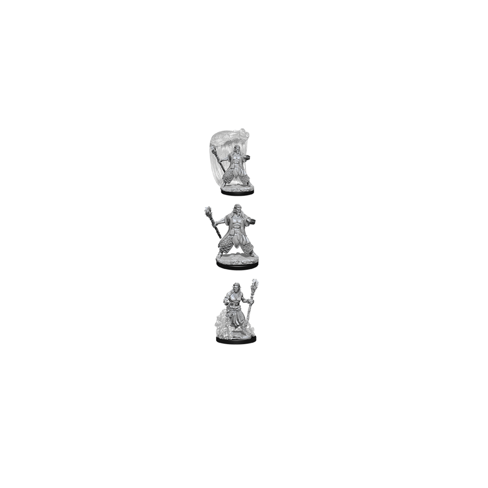 D&D Nolzur's Marvelous Unpainted Miniatures: Water Genasi Male Druid