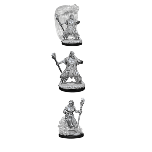 D&D Nolzur's Marvelous Unpainted Miniatures: Water Genasi Male Druid