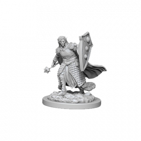 D&D Nolzur's Marvelous Unpainted Miniatures: Elf Male Cleric