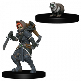 D&D Wardlings: Girl Rogue and Badger