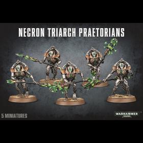 Warhammer: Necron Triarch Praetorians /Lychguard
