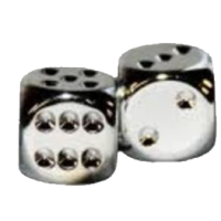 Silver Metallic D6 Dice