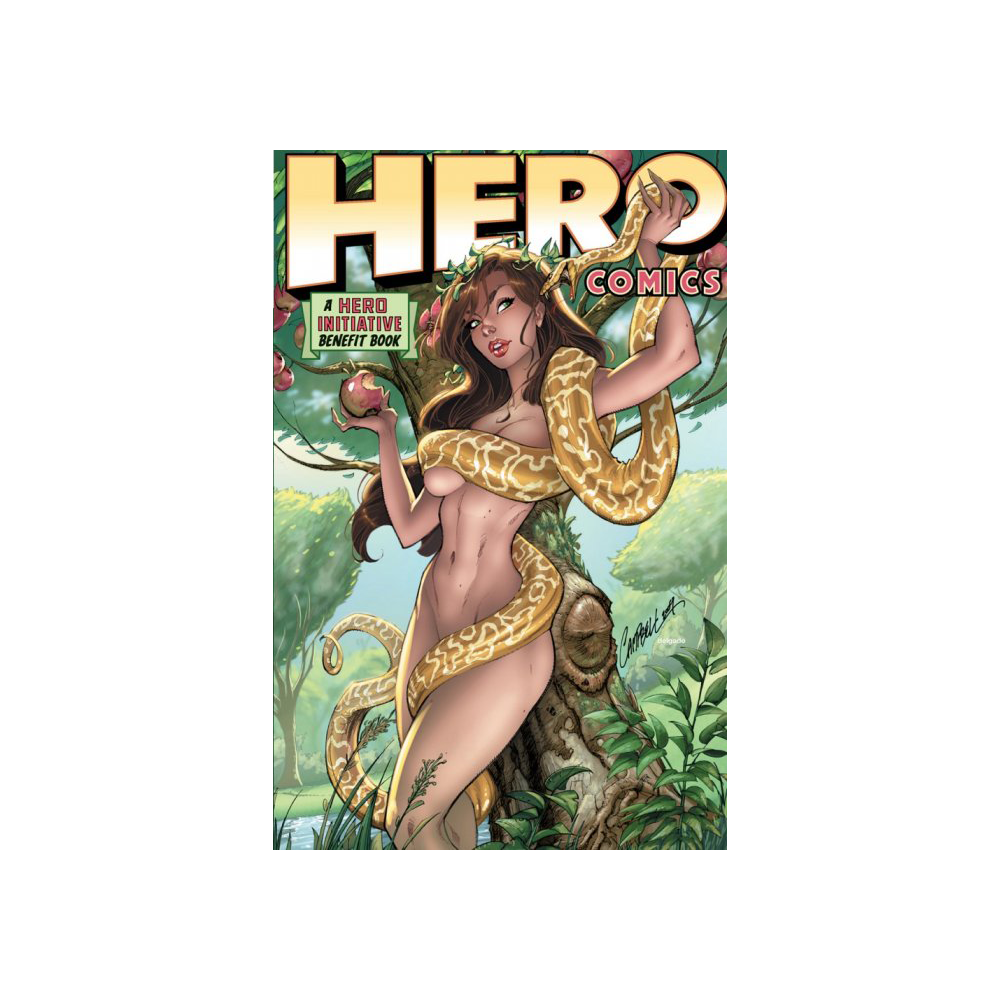 Hero Comics: A Hero Initiative Benefit Book TP