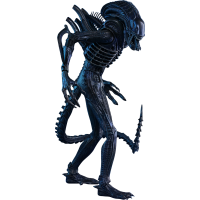 Aliens Movie Masterpiece Action Figure 1/6 Alien Warrior 35 cm