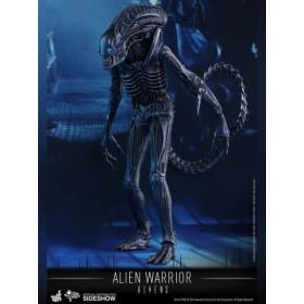 Aliens Movie Masterpiece Action Figure 1/6 Alien Warrior 35 cm
