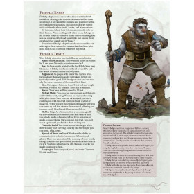 Dungeons & Dragons Core Rulebook: Volo's Guide to Monsters (limited ed.)