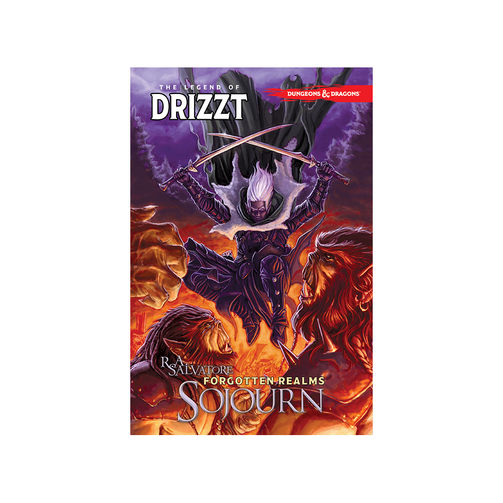 Dungeons & Dragons: Legend of Drizzt TP Vol 03 Sojourn