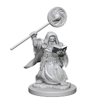 D&D Nolzurs Marvelous Unpainted Miniatures: Dwarf Male Wizard
