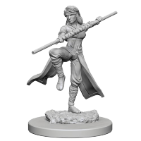 D&D Unpainted Miniatures: Human Female Monk