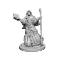 D&D Unpainted Miniatures: Human Female Wizard