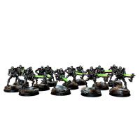 Warhammer: Necron Warriors with Canoptek Scarabs