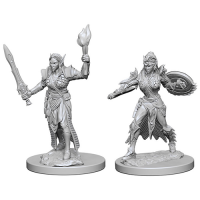 Pathfinder Unpainted Miniatures: Elf Female Fighter