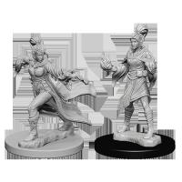 Pathfinder Unpainted Miniatures: Elf Female Sorcerer