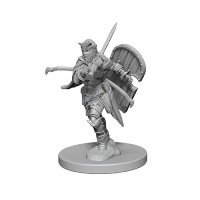 Pathfinder Unpainted Miniatures: Human Female Paladin