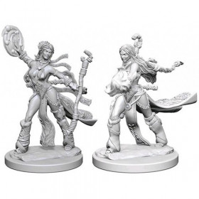Pathfinder Unpainted Miniatures: Human Female Sorcerer