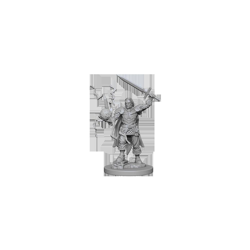 Pathfinder Unpainted Miniatures: Human Male Cleric