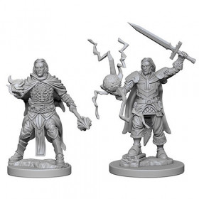Pathfinder Unpainted Miniatures: Human Male Cleric