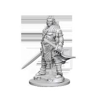 Pathfinder Unpainted Miniatures: Human Male Fighter