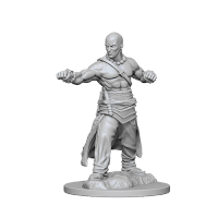 Pathfinder Unpainted Miniatures: Human Male Monk