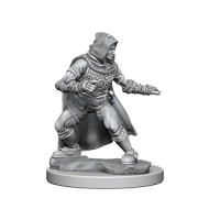 Pathfinder Unpainted Miniatures: Human Male Rogue