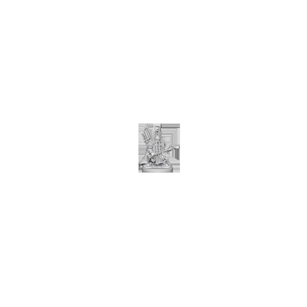D&D Nolzur's Marvelous Unpainted Miniatures: Dwarf Male Paladin