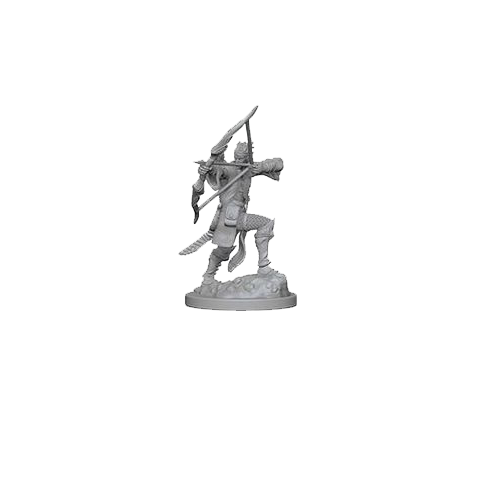 D&D Nolzur's Marvelous Unpainted Miniatures: Elf Male Bard