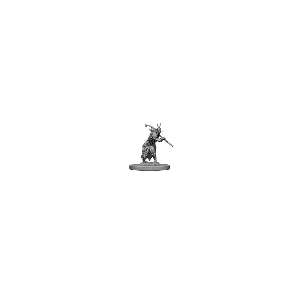 D&D Nolzur's Marvelous Unpainted Miniatures: Elf Male Druid