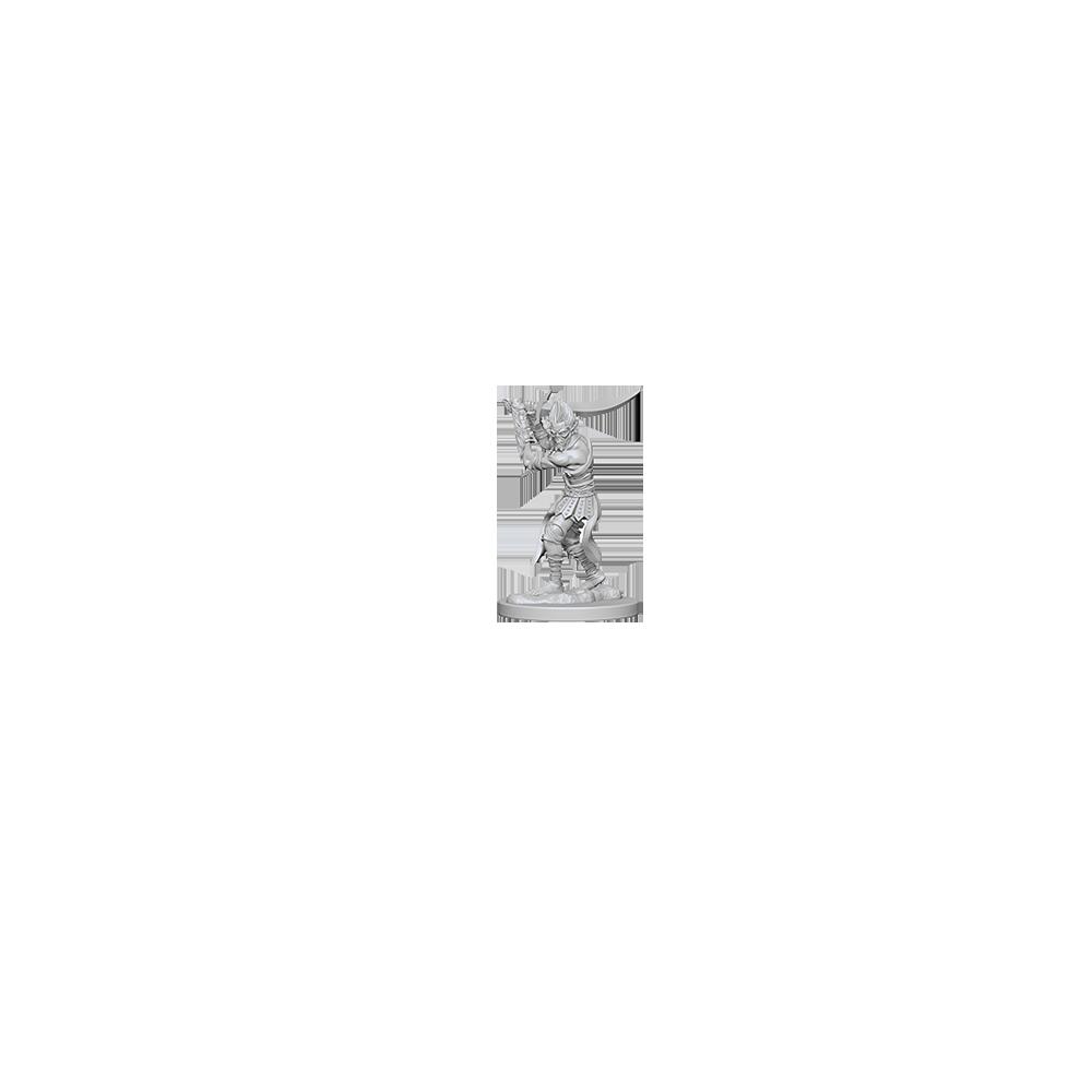 D&D Nolzur's Marvelous Unpainted Miniatures: Githyanki