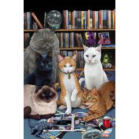Hero Cats TP Vol 05 New Visions