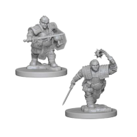 D&D Nolzur's Marvelous Unpainted Miniatures: Dwarf Female Fighter