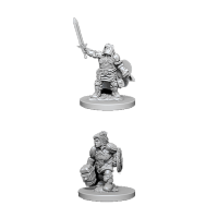 D&D Nolzur's Marvelous Unpainted Miniatures: Dwarf Female Paladin