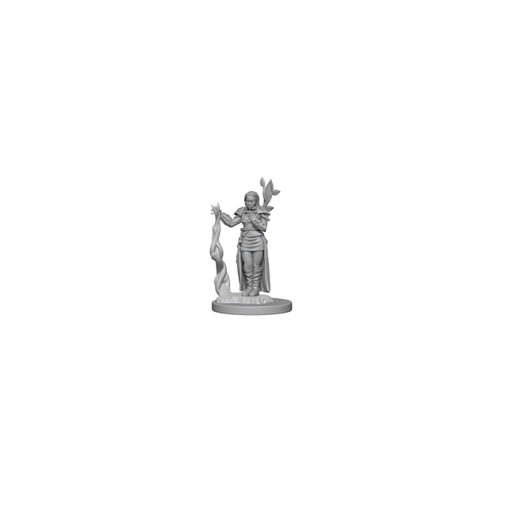 D&D Nolzur's Marvelous Unpainted Miniatures: Human Female Druid