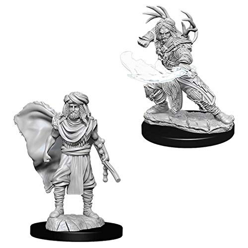 D&D Unpainted Miniatures: Male Human Druid