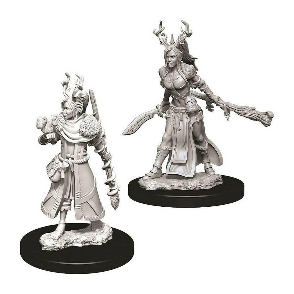Miniaturi Nepictate D&D Female Human Druid