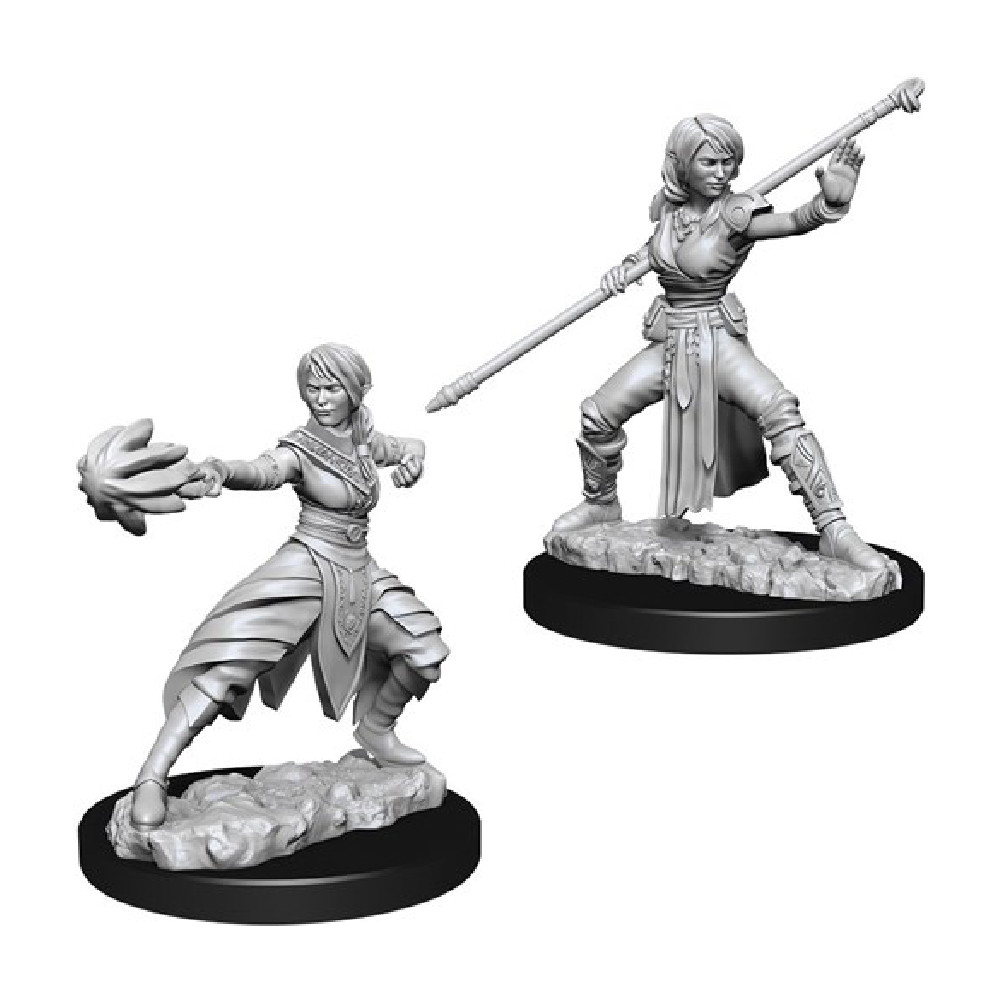 Miniaturi Nepictate D&D Nolzur's Marvelous Female Half-Elf Monk