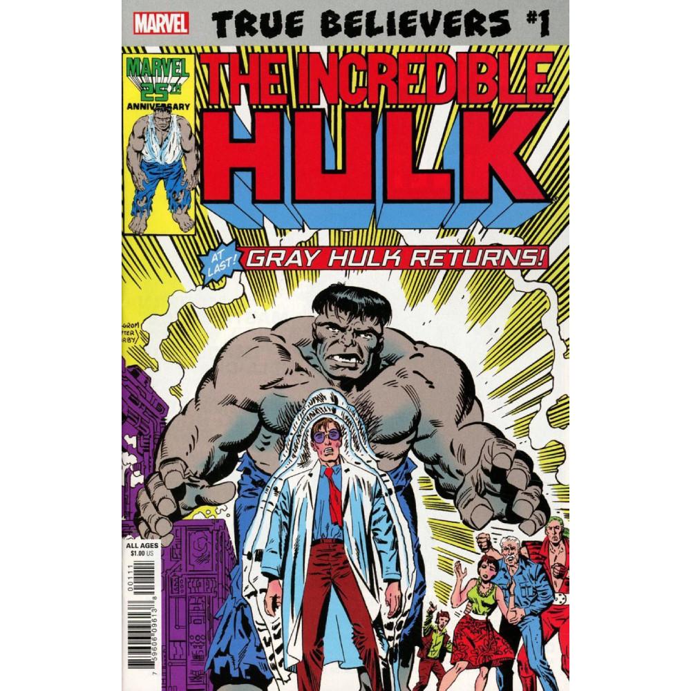 True Believers Hulk Gray Hulk Returns 01